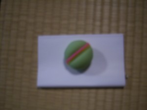 Wagashi (Japanese tea sweet)
