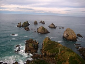 Nugget Point, Catlins Coast, South Island, New Zealand