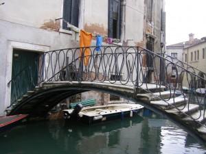 The Venice Fish