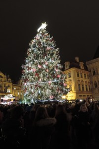 Christmas Tree in Old Town Square