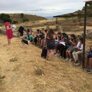 Learning about Hellenistic Greek houses perched on the foundations of the House of the Arched Cistern at Morgantina